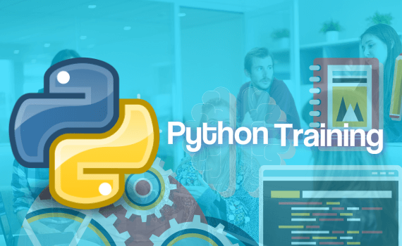 best python online training